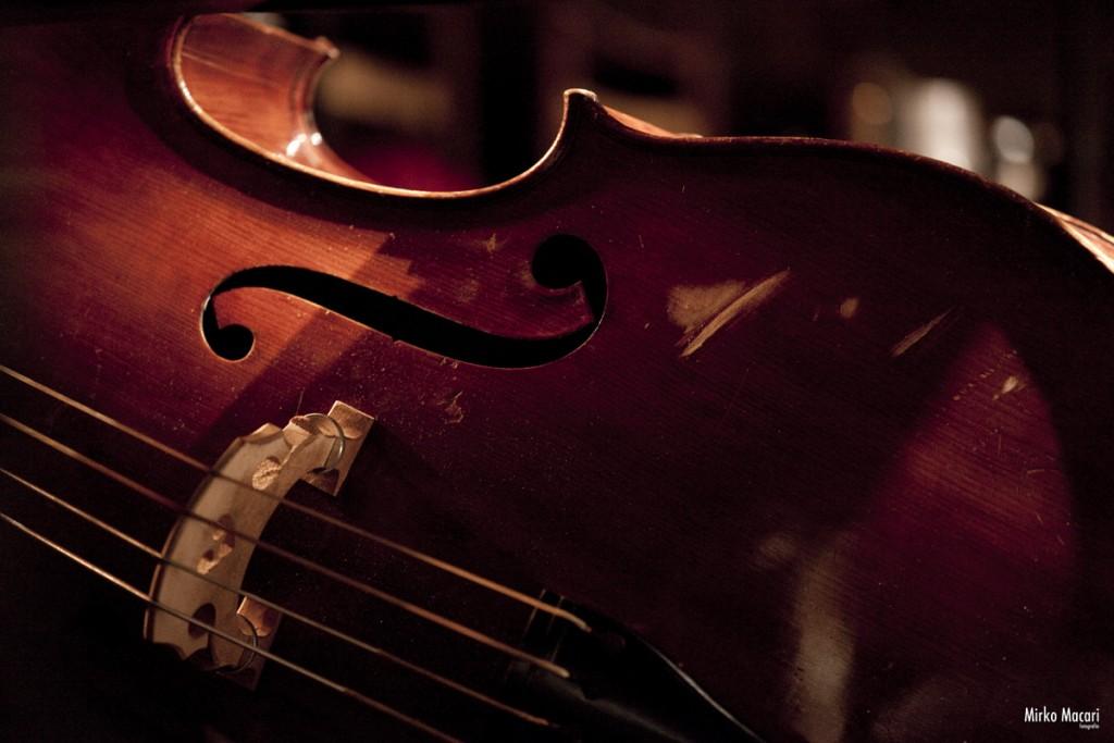 XPERIMENTA Double Bass